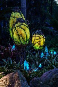 World of Pandora, Disney's Animal Kingdom